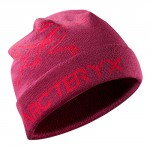 Arcteryx шапка Rolling Word Hat Men